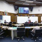 PL que propõe locais apropriados para empinar pipas é aprovado em 1º turno